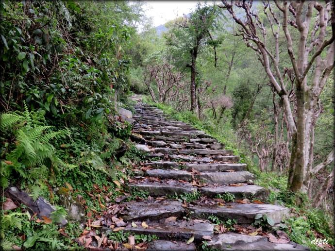 trekking path nepal