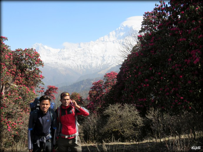 nepal travel guide & porter